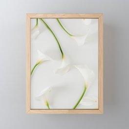 Calla lily Framed Mini Art Print