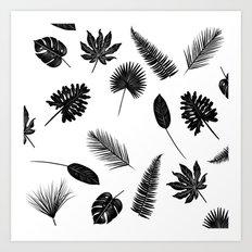 Botanical study - Fern Leaves pattern Art Print