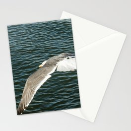 Fly seagull ocean Stationery Cards