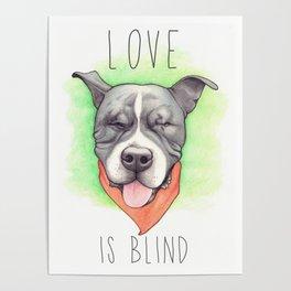 Pitbull - Love is blind - Stevie the wonder dog Poster