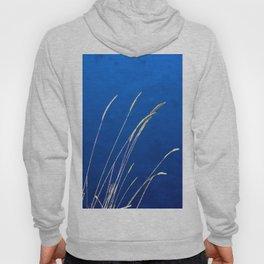 Blue Grass Evenings Hoody