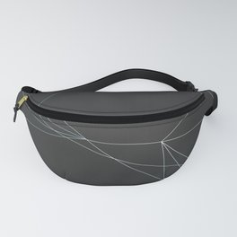LIGHT LINES ENSEMBLE I Fanny Pack