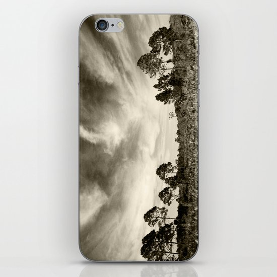 The real Florida  iPhone & iPod Skin