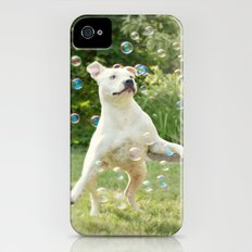 Pitbull and Bubbles  iPhone (4, 4s) Slim Case