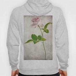 English Tea Rose  Hoody
