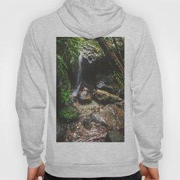 Deep into the Rainforest Hoody