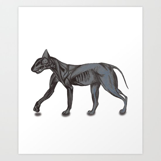 Anatomy of the Cat Art Print