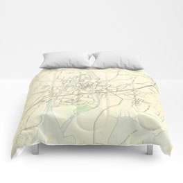 Vintage Map of Stamford CT (1893) Comforters