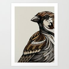 Berlin Sparrow Art Print