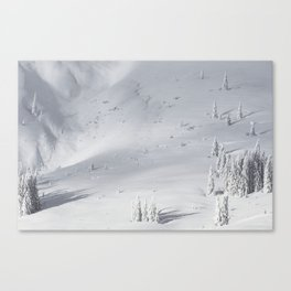 Planet Snow 1 Canvas Print