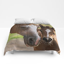 Horse Family Comforters