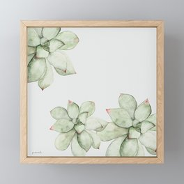 Succulent Plant Framed Mini Art Print