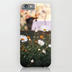 Everything's coming up daisies iPhone 6s Slim Case