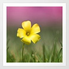 Yellow on Pink Art Print