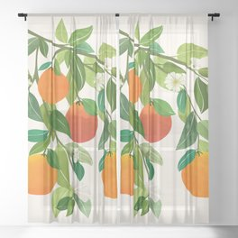 Oranges and Blossoms II / Tropical Fruit Illustration Sheer Curtain