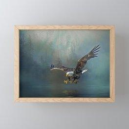 Bald eagle swooping for fish Framed Mini Art Print