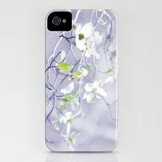 Spring's Awakening iPhone (4, 4s) Slim Case