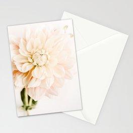 Vanilla Truffle Dahlia Stationery Cards