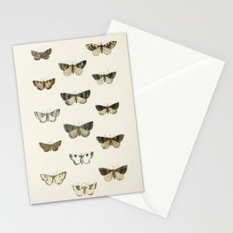 Naturalist Moths Stationery Cards