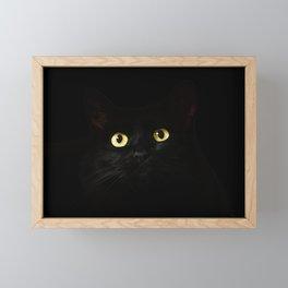 Eye-catching black cat Framed Mini Art Print