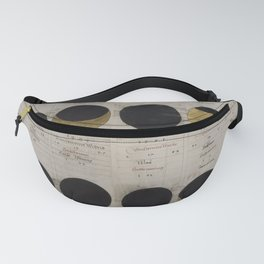 Gold Eclipse Fanny Pack
