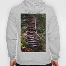 Old Wet Stone Steps Hoody