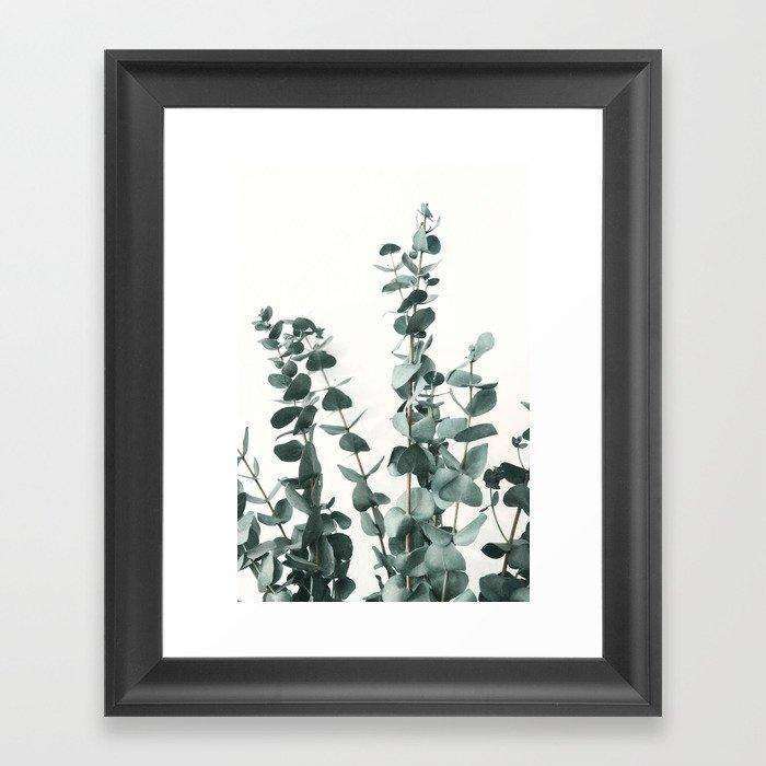 Eucalyptus Leaves Gerahmter Kunstdruck