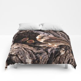 House Sparrow Keeping House Comforters