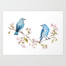 Mountain Bluebirds on Sakura Branch Art Print