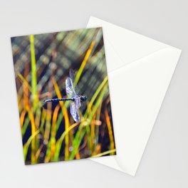 Damselfly Stationery Cards