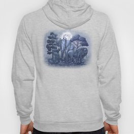 Midnight in the Stone Garden (colour option) Hoody