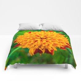 Orange Tagetes flower Comforters