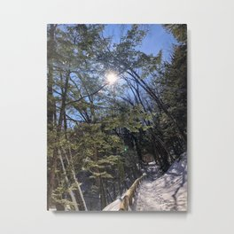 Sabbaday Brook Trail NH (1) Metal Print