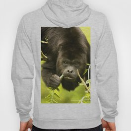 Howler monkey Hoody