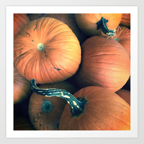 PUMPKIN HARVEST Art Print