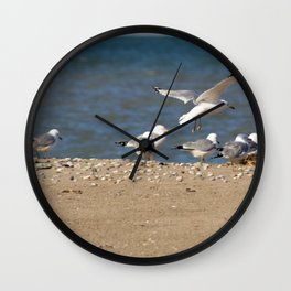 Landing | Seagull Photography Wall Clock