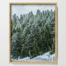 Snow Bank Woodlands // Photograph of the Dense Blue Green Evergreen Pine Tree Forest Serving Tray
