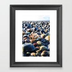 Lonley Barnacle Framed Art Print
