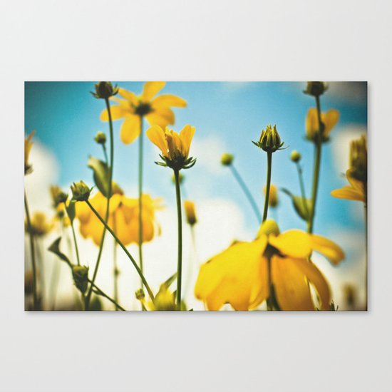 Happy day filled with sunshine Canvas Print