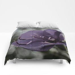 Rainy Day Tibouchina Laxiflora Comforters