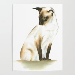 seal point siamese cat 1 Poster
