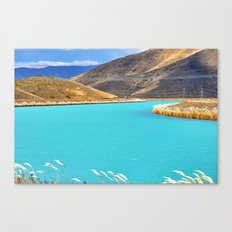 River in New Zealand Canvas Print