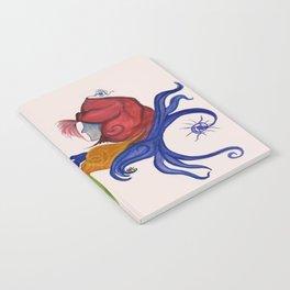 Stars falling Down Notebook