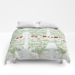 A reminder of past poppies Comforters