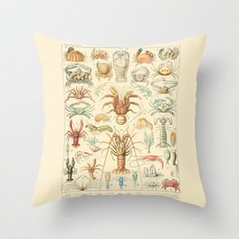 Sea Creatures // Crustaces by Adolphe Millot 19th Century Science Textbook Diagram Artwork Throw Pillow