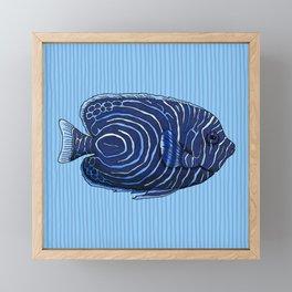 Juvenile Emperor Angelfish Framed Mini Art Print