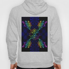 Rainbow flowers Hoody