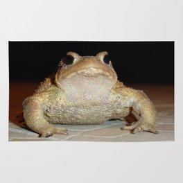 Common European Toad Rug