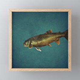 Trout on Teal Blue Framed Mini Art Print