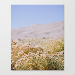 miles to go, nowhere to be. Canvas Print